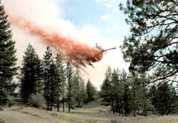 Photo by Joe SomdayA Department of Natural Resources plane drops retardant on areas near a fire off Canyon Spur Road east of Oroville. The fire was started by fireworks July 4.