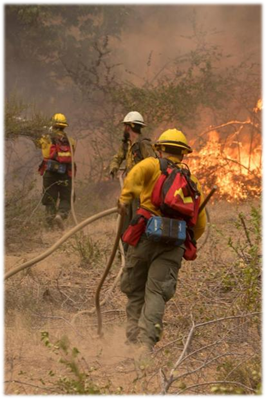 DNR firefighters